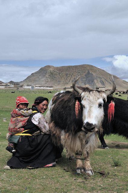 Drokpa (Nomad) Herders - Tibet, China
