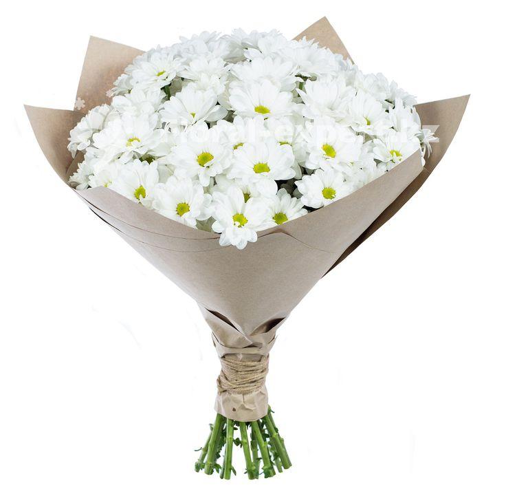 букет цветов стильный хризантемы: 25 тыс изображений найдено в Яндекс.Картинках