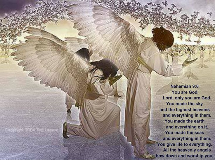 Angels - Angel Bible Study and Christian Teaching on ...