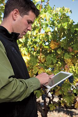 You can use Vinea to create worker profiles with each individual's skills, training and immigration details and more. It is best Vineyard Contract Management software.