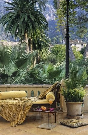 Outdoor Living RealPalmTrees.com Look at those palm trees they look amazing with a nice lounge chair to appreciate the view