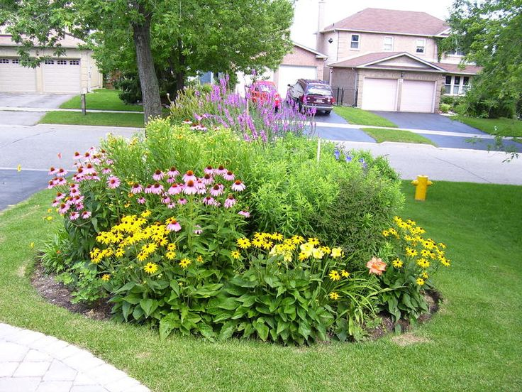 174 best island and berm gardens images on pinterest for Best plants for flower beds