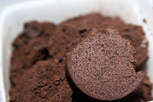 How to Use Coffee Grounds in Your Garden (Because plants also need a pick-me-up)