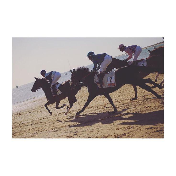 Un día en las carreras (III) #sanlucar #sanlucardebarrameda #carrerascaballos #horserace #horse #caballos #playa #beach #igerscadiz #igersandalucia #canon6d #fullframe #photooftheday #picoftheday #summer #summertime #veraneo #cadizfornia