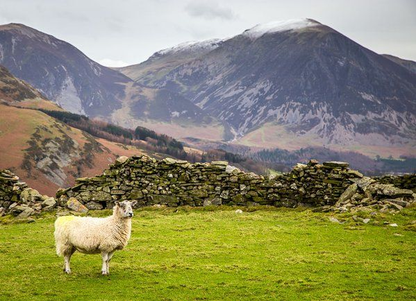 Loweswater, Lake District, Cumbria, England