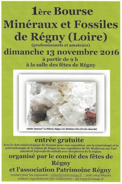 simple locataire: 1ère Bourse Minéraux/Fossiles de Régny (Loire), 13...