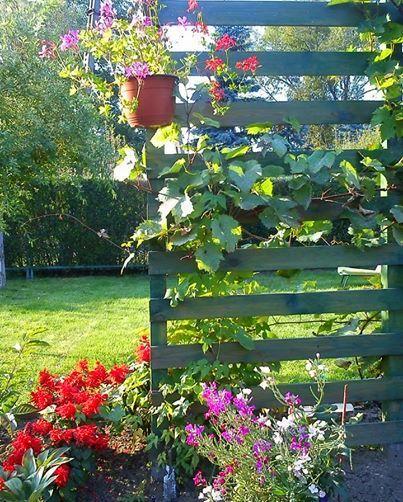 Uwielbiam pielęgnować ogród :)