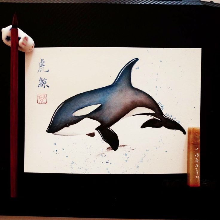 watercolor killer whale