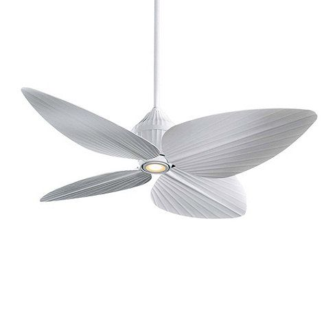 1000 images about ceiling fan for homes on pinterest
