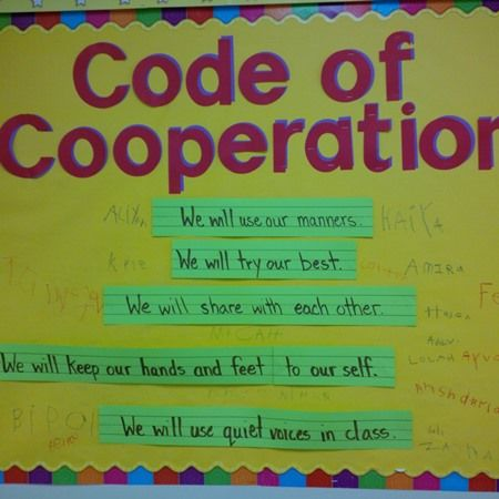 56 best Code of Cooperation images on Pinterest Coding - code of conduct example