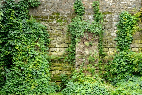 17 Best images about Stone walls on Pinterest Lake