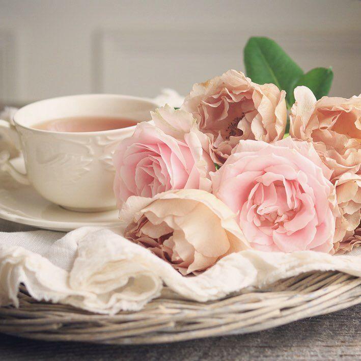 фото ммс доброе утро с цветами наклейки