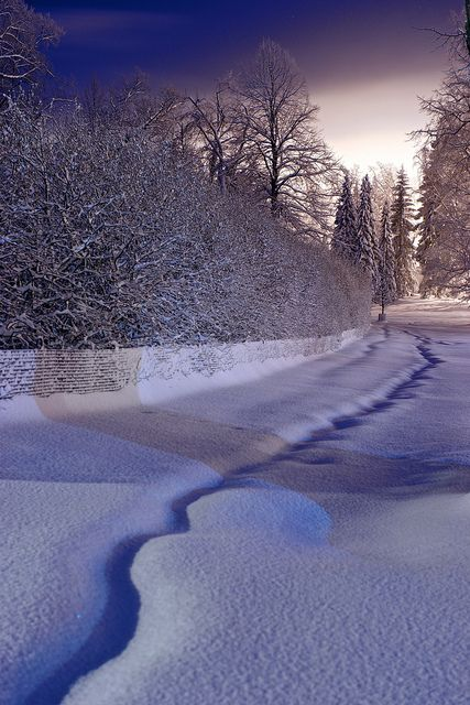 A path through the snow, Helsinki, Finland.