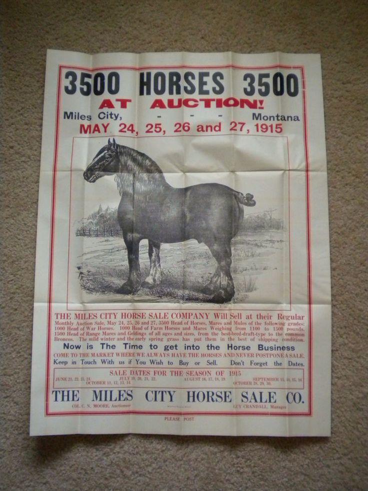 Mer enn 25 bra ideer om Horse sales på Pinterest - Horse Sales Contracts