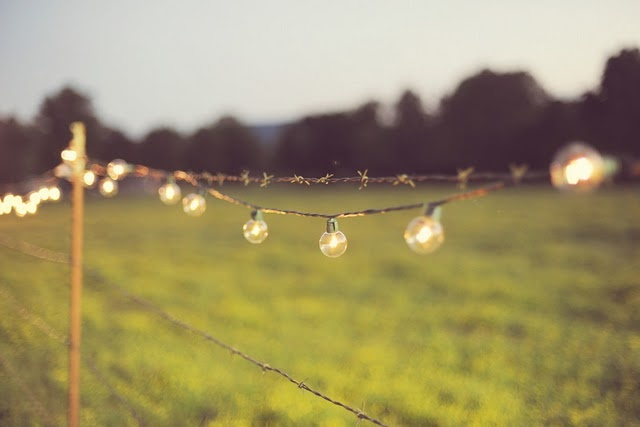 Cafe Lights - Farm Wedding