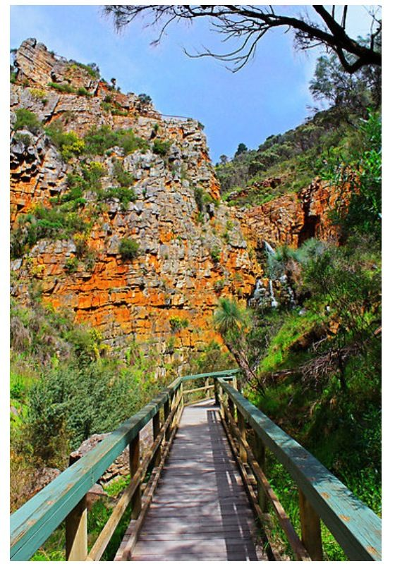 Morialta Falls, Adelaide Hills, Adelaide, South Australia. Not far from where we lived. Hiked with Jerry many times here.