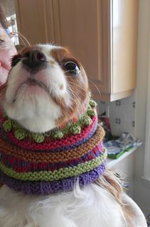 Too cute! Knit in 5 colors of DK weight. Snoods for ...