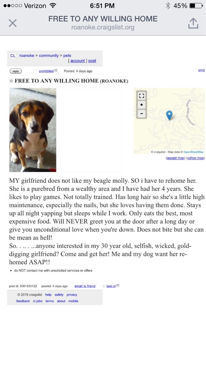 His Girlfriend Said He Had To Get Rid Of His Dog, So He Posted This Ad On Craigslist :)
