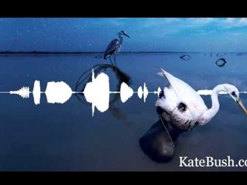 Kate Bush - Aerial: A(n Endless) Sky Of Honey  42min