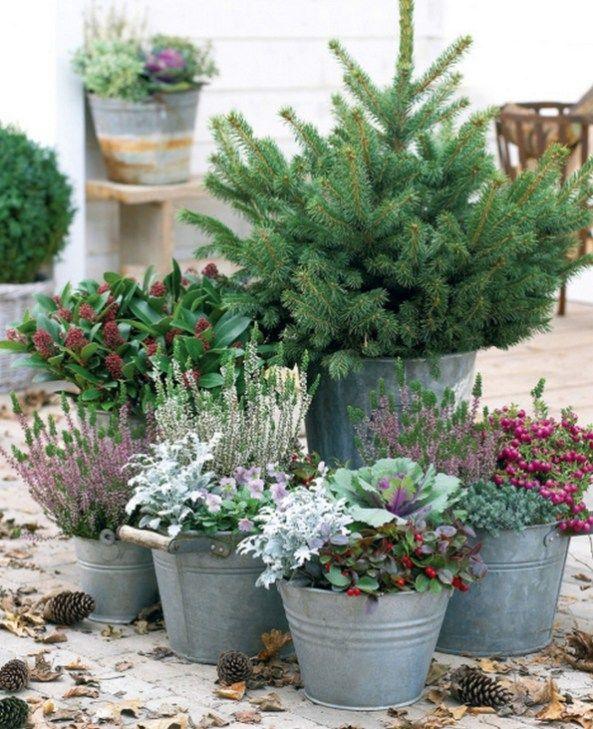 Schöne Outdoor Winter Container Garten Design  Ideen (7 – Dekoration Eingang/ Garten
