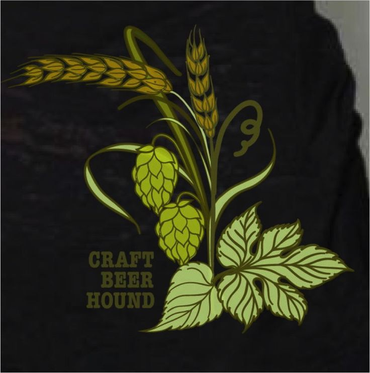Close up image of hops and barley four color print graphic on burnout beer tee for women
