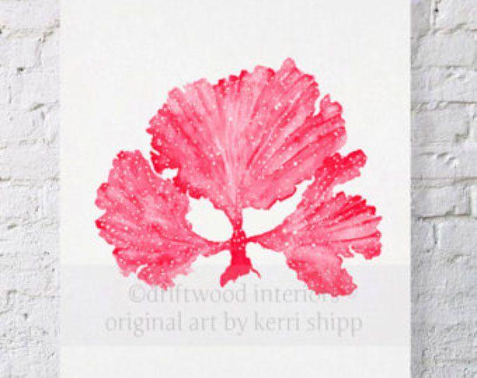 Alga marina II en imprimir acuarela roja rubí 8 x 10 - impresión del arte del Coral del mar - mar Fan arte grabado - arte Coral por Kerri Shipp