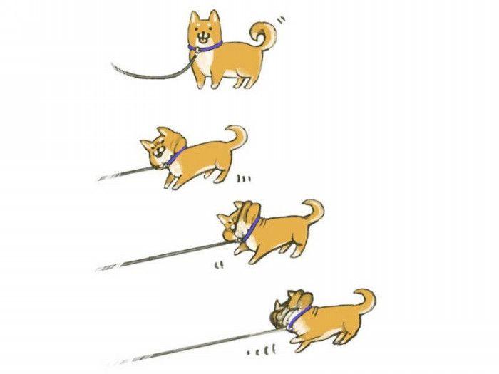 犬「もう動きたくないでござる」動きたくない犬たちの必死の抵抗画像10選! - Spotlight (スポットライト)