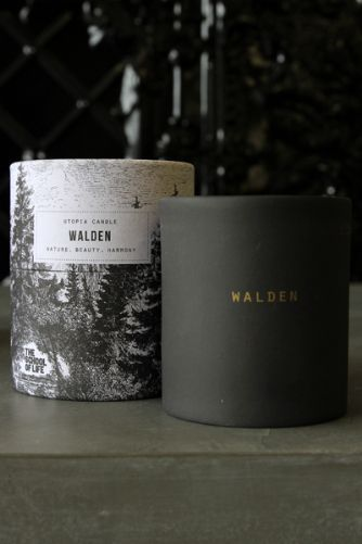 Scented Candle - Walden - scent of Wild Berries With Citrus Geranium Cassis Amber  Sandalwood PS