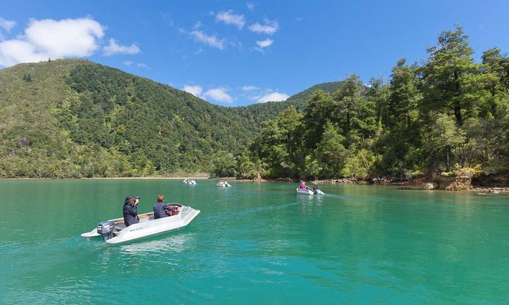 Pelorus Sound, Waterways Boating Safaris, Nový Zéland