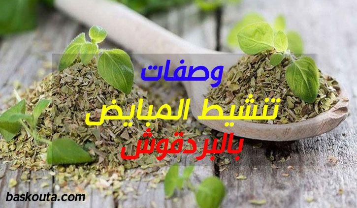 وصفات تنشيط المبايض بالبردقوش Plants