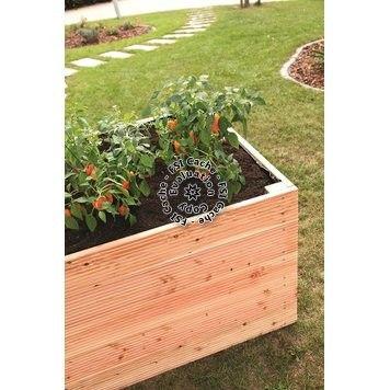 Hochbeet Douglasie 100 cm x 200 cm x 72,5 cm kaufen bei OBI