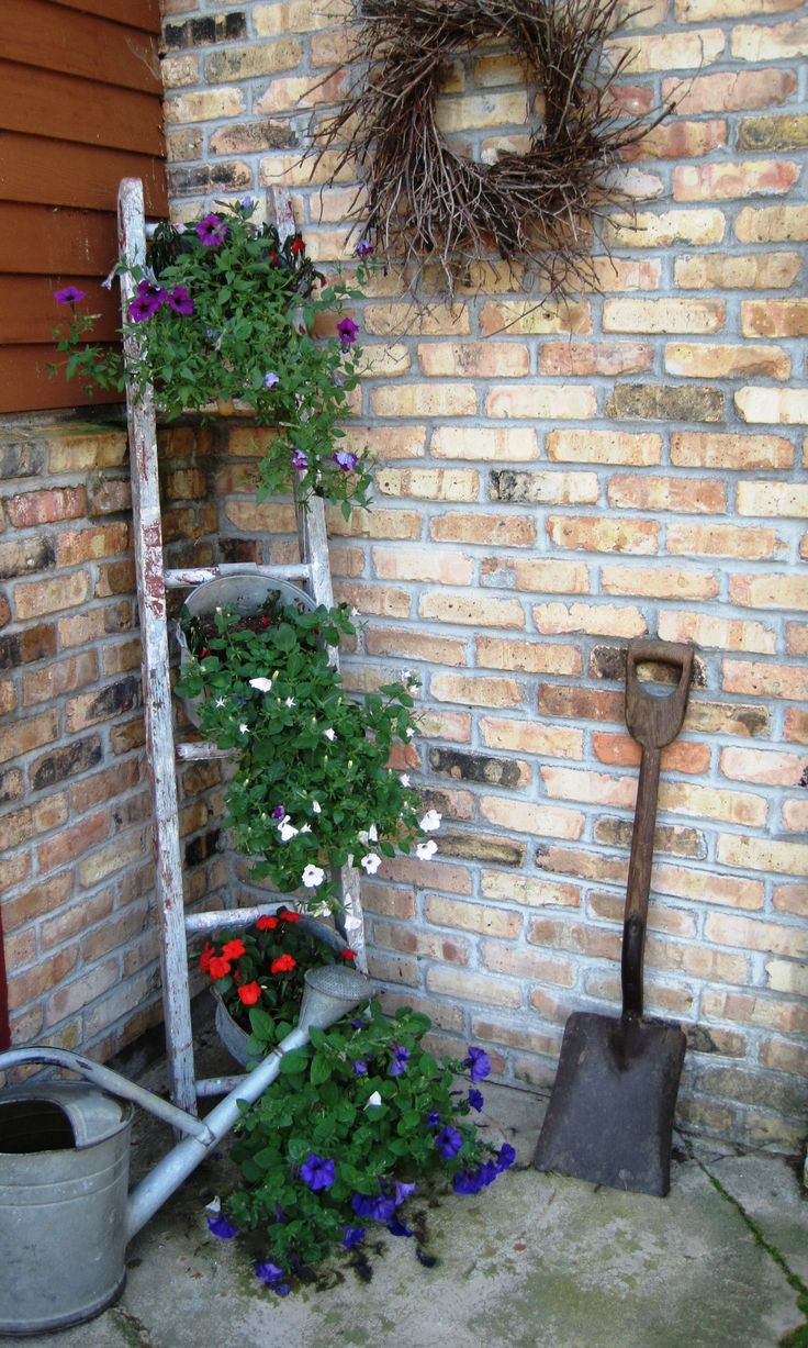 Love using ladders with buckets filled with flowers!