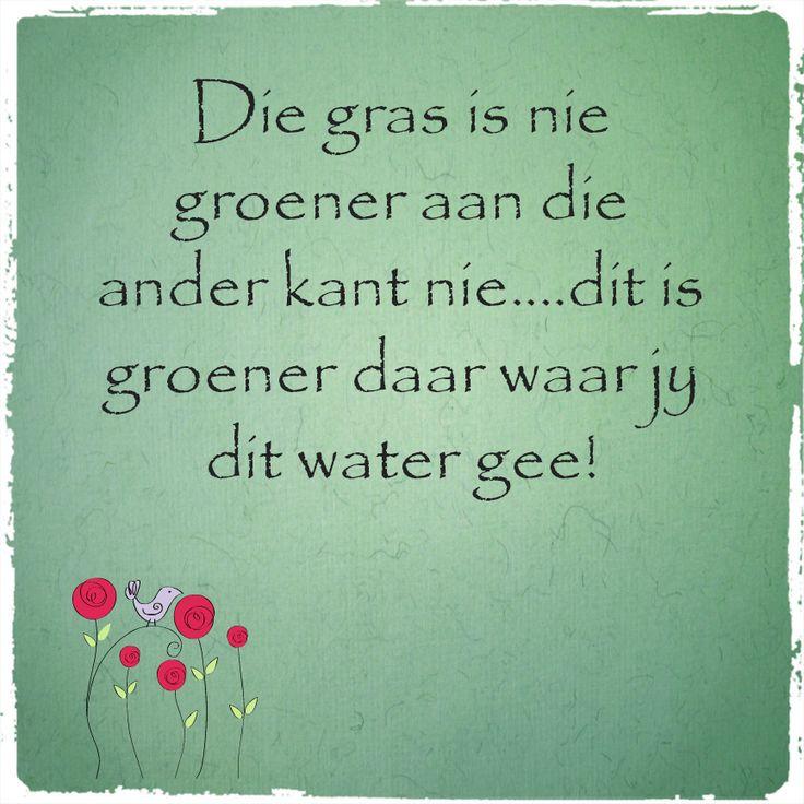Afrikaanse Inspirerende Gedagtes & Wyshede: Die gras is nie groener aan die ander kant nie...dit is groener daar waar jy dit water gee!