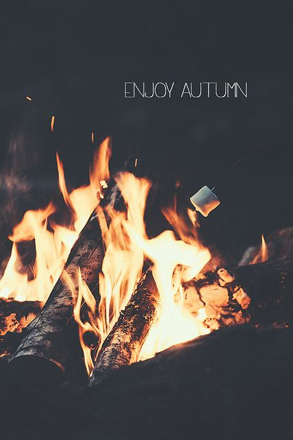 Enjoy autumn...oh I can't wait for bonfires and toasting marshmallows: