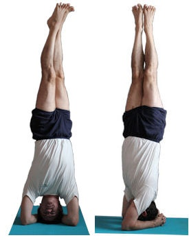 parsva sirsasana  iyengar yoga asana  pinterest