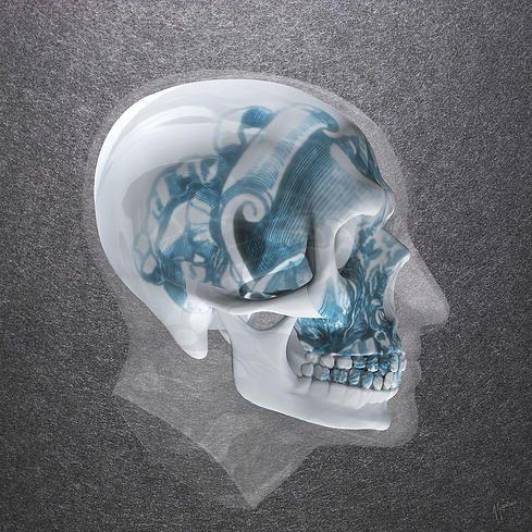 Delicate Mind   2015 C-type Print, Original Diasec® Glossy Plexi / Alu-Dibond 5+3mm 120 x 120 cm