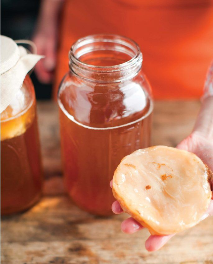 How To Troubleshoot Kombucha | Food Republic