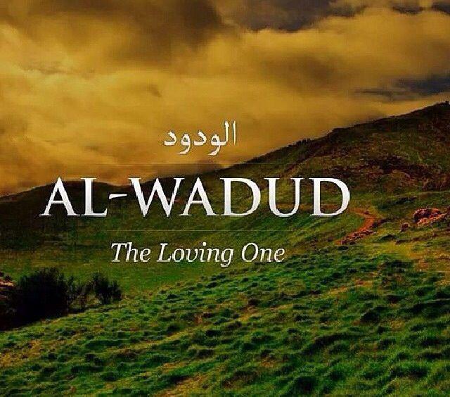 Al-wadud