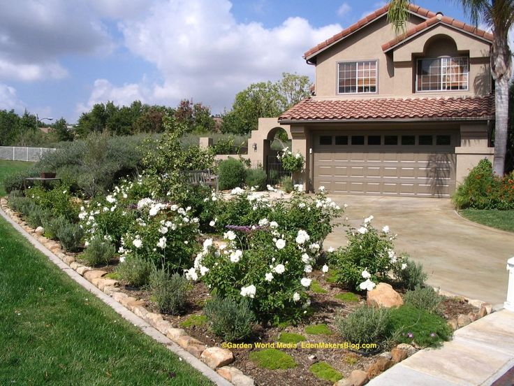 Mobile home landscaping iceberg rose and lavender front yard no lawn iceberg roses and - Practical ideas to decorate front yards in the city ...