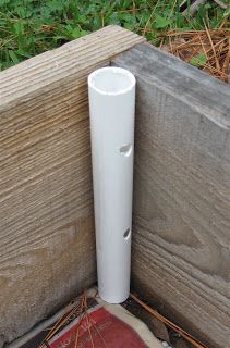Add PVC To Raised Beds as anchors for hoops to guard against frost or provide green house effect.