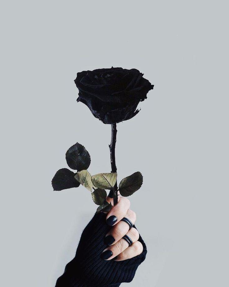 Ich habe es schwarz gestrichen, weil ich weiß, dass du normale Dinge nicht magst. 🥀🖤