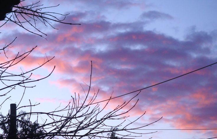 Winter pink clouds