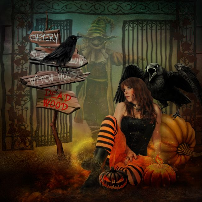 mini kit the season of pumpkins de kittyscrap. ©InadigitalArt 2017. http://digital-crea.fr/shop/?main_page=index&manufacturers_id=180&zenid=a84603c428b332e649047ed7fad70170