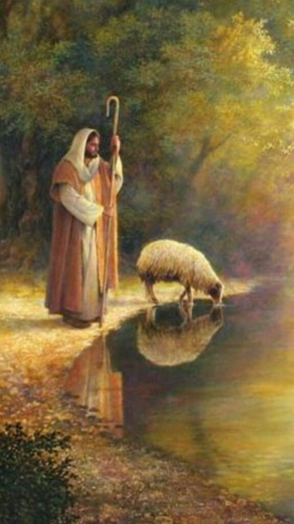 What do u see???I see JESUS is my Shepherd, I see clean water, so clean I can see myself, I can see I am a sheep, I realize what I am I see my reflection,I can see the Shepherds reflection standing by watching me, guarding me, from all predators, I trust Him so I am able to put my face to the water and drink deeply, without water I will die, He lets me drink till I am full. The LORD is my Shepherd, I shall not want. If u r struggling today ponder your position as a sheep.