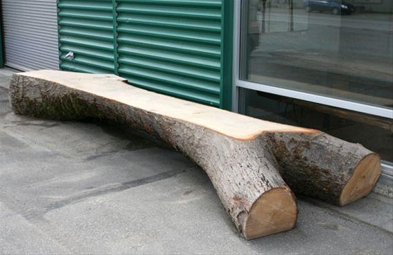 1000 Images About Tree Stump Ideas On Pinterest Log Benches Wood Slices And Tree Stumps