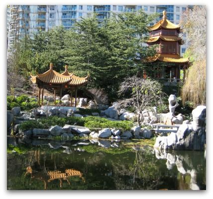The beautiful Chinese Gardens in Darling Harbour in Sydney, Australia.
