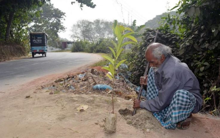 """The """"Forest Man of Bangladesh"""" Has Been Planting a Tree Every Day for the Past 48 Years - http://www.odditycentral.com/news/the-forest-man-of-bangladesh-has-been-planting-a-tree-every-day-for-the-past-48-years.html"""