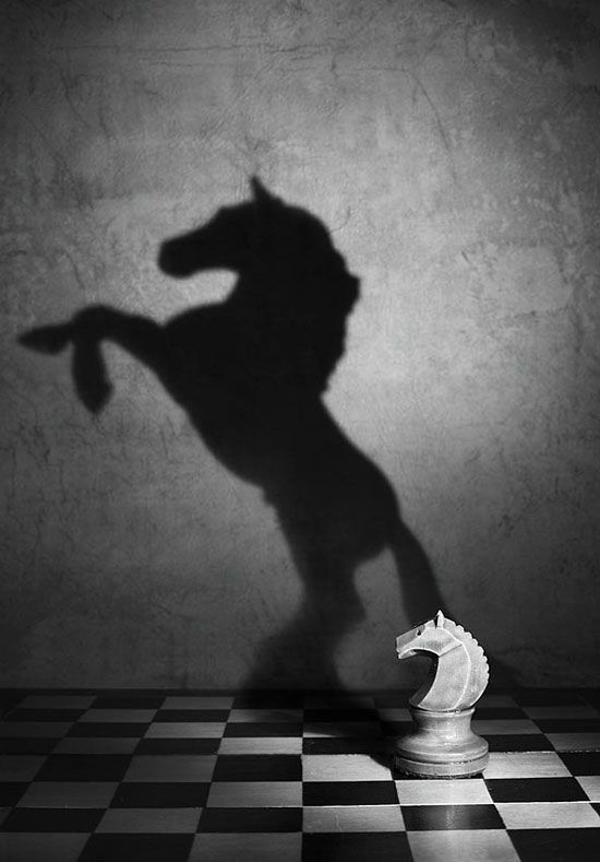 Best 25+ Shadow photography ideas on Pinterest | Shadows ...