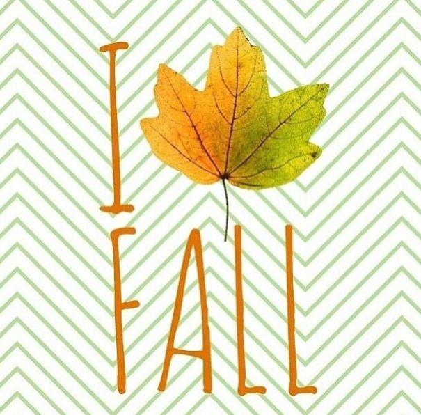 Me encanta el otoño!