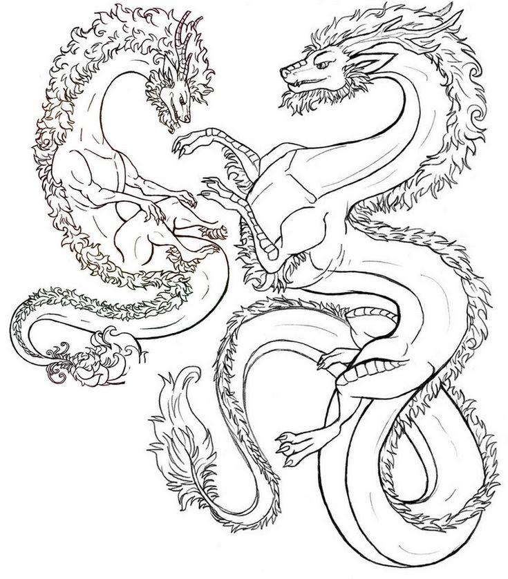 Adult Coloring Page Fantastic Animals Dragons 10
